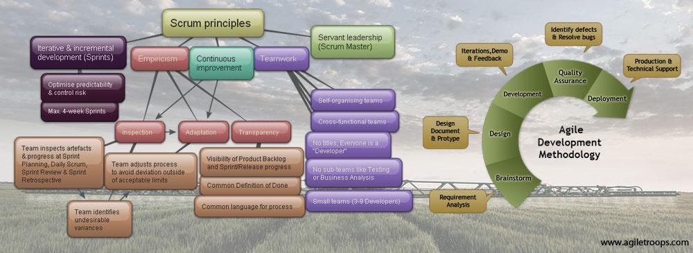 Agile-Scrum Methodology